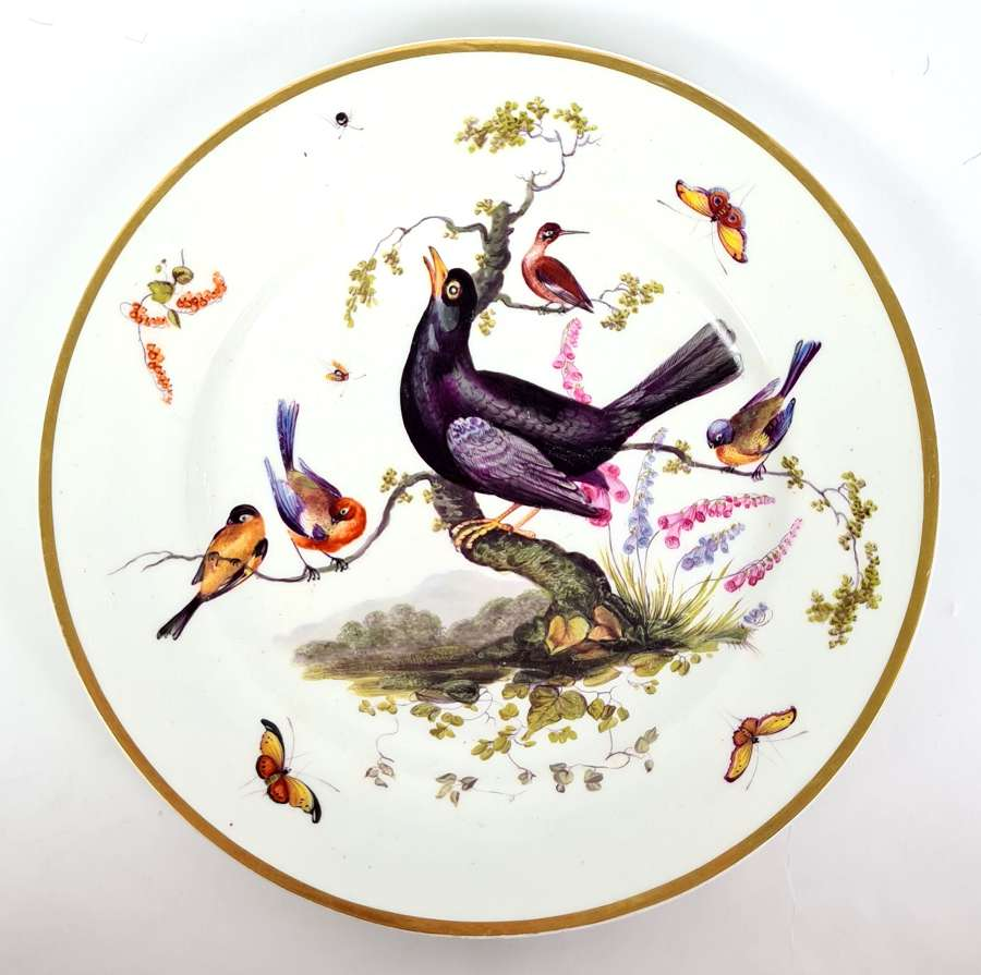 Derby Plate Painted with Birds