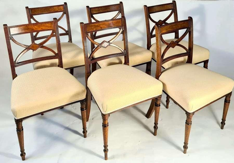A Set of 6 Sheraton Mahogany Dining Chairs